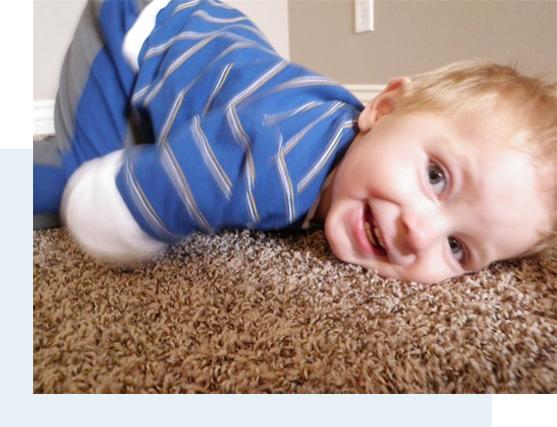 Spring Clean Carpets Professional Carpet Cleaning Utah